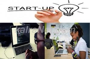 <em>La startup peut se développer à travers des hubs technologiques</em>