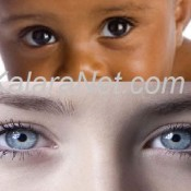 Les yeux gardent la même taille tout au long de la vie