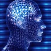 Quotient Itellectuel mesure l'intelligence