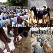 La Tabaski est une des fêtes importantes chez les musulmans