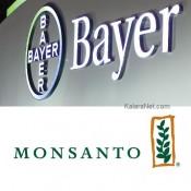 Bayer devient un géant en rachetant Monsanto