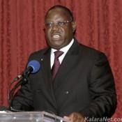 Le nouveau gouvernement gabonais est majoritairement composé de pro Bongo