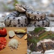 Le bouillon de vipère est très appréciée au Cameroun